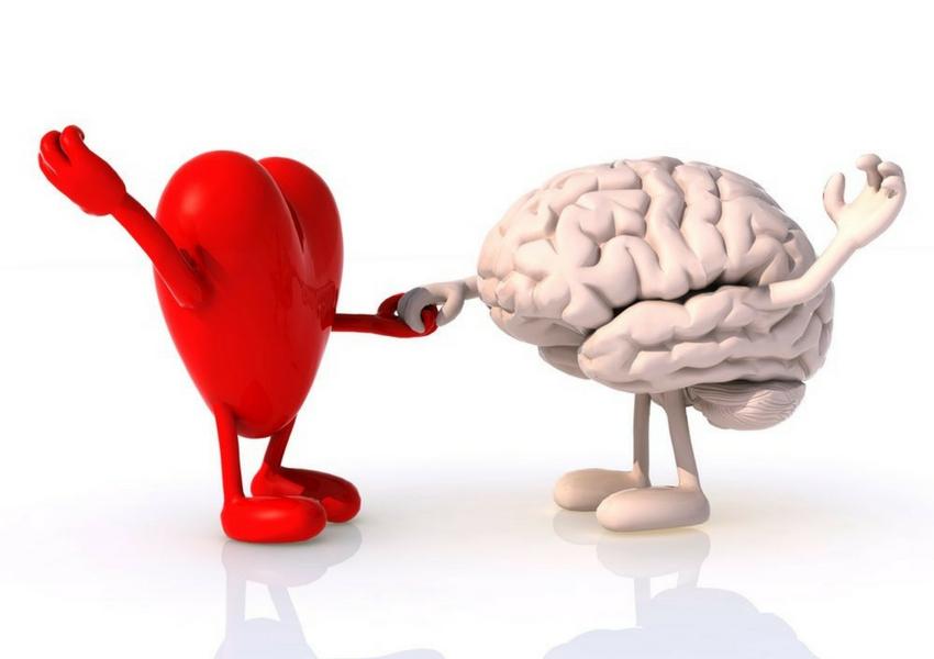 Cerebro y Corazón Xavi Iglesias
