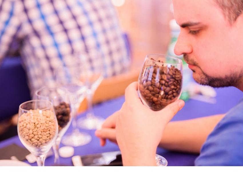 Catando café, Xavi Iglesias